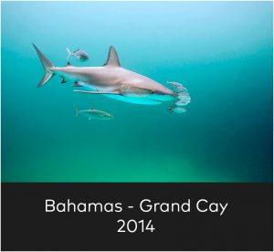 Bahamas Grand Cay 2014