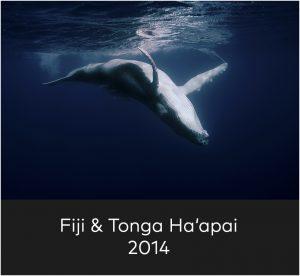 Fiji & Tonga Ha'apai 2014