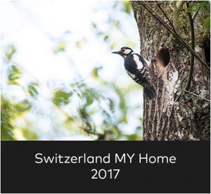 Switzerland my home 2017