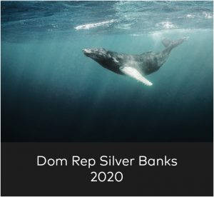 domrepsilverbanks
